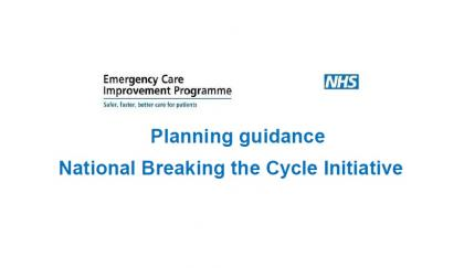 Planning guidance National Breaking the Cycle Initiative April 2015