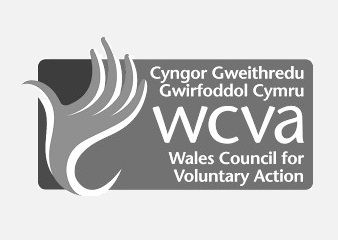 Welsh Council Voluntary Action Logo